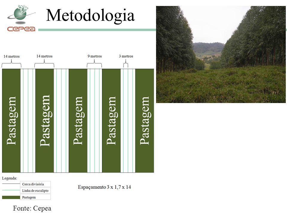 Metodologia Fonte: Cepea