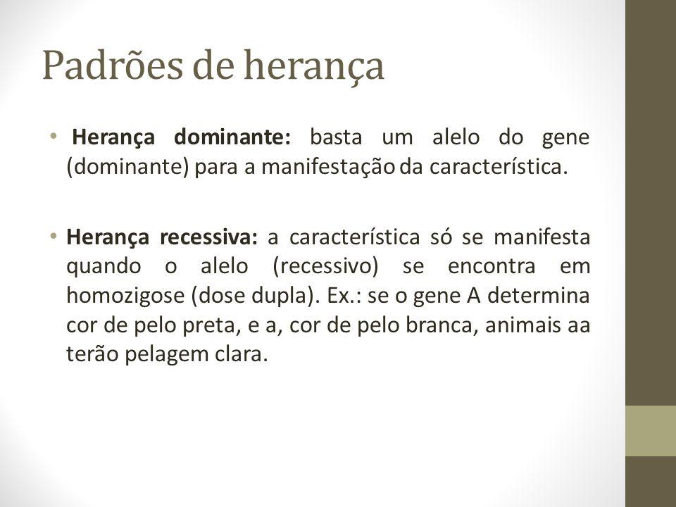 Padrões de herança Herança dominante: basta um alelo do gene (dominante) para a manifestação da característica.