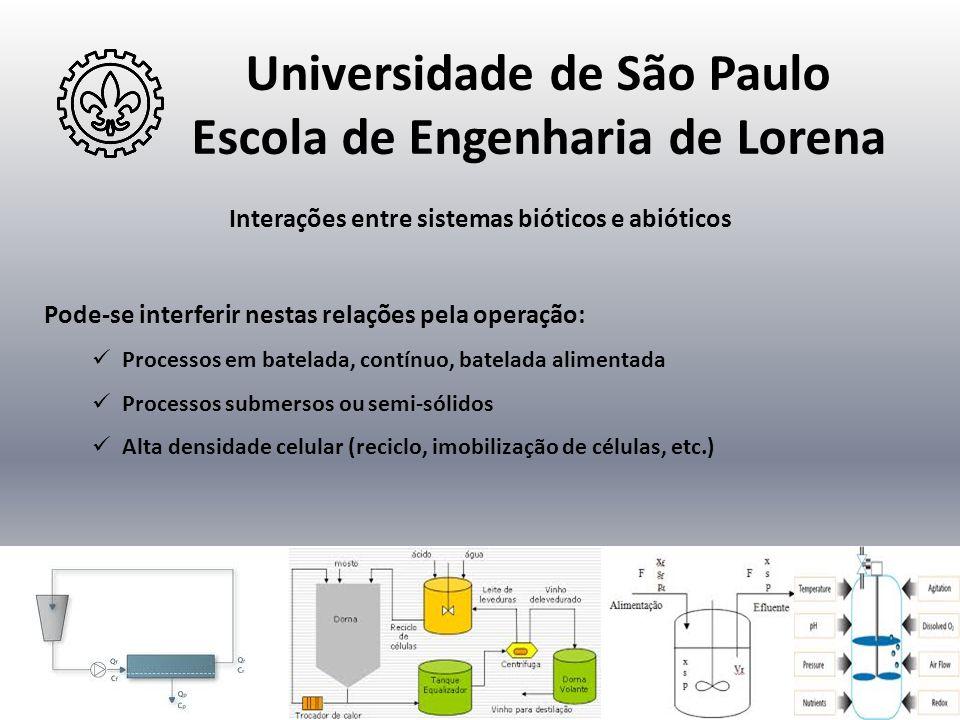 Universidade de São Paulo Escola de Engenharia de Lorena
