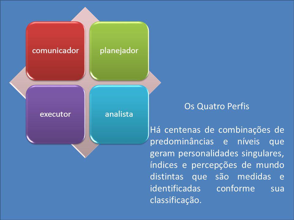 comunicador planejador. executor. analista. Os Quatro Perfis.