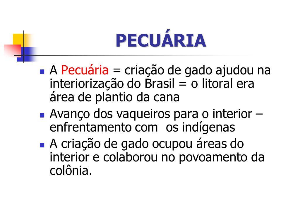 PECUÁRIA A Pecuária = criação de gado ajudou na interiorização do Brasil = o litoral era área de plantio da cana.