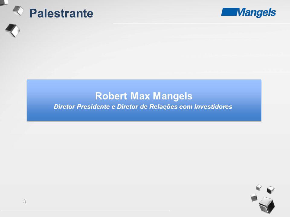 Diretor Presidente e Diretor de Relações com Investidores