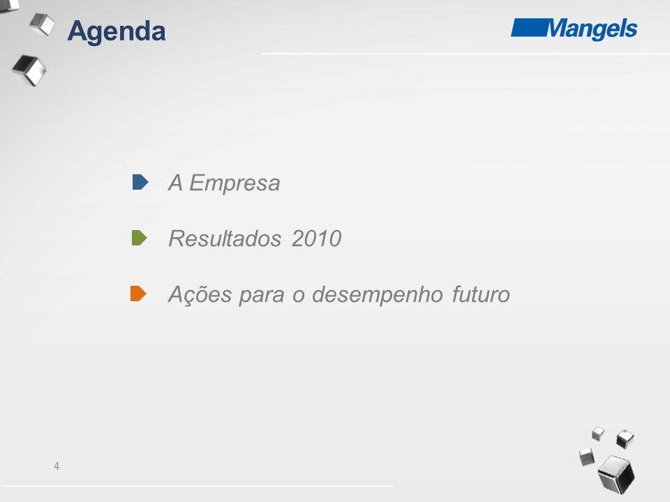Agenda A Empresa Resultados 2010 Ações para o desempenho futuro