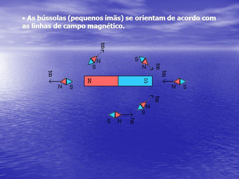 As bússolas (pequenos ímãs) se orientam de acordo com as linhas de campo magnético.