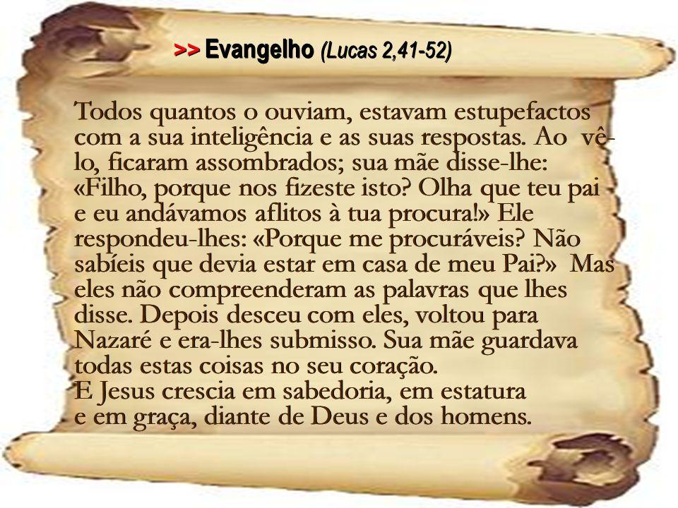 >> Evangelho (Lucas 2,41-52)