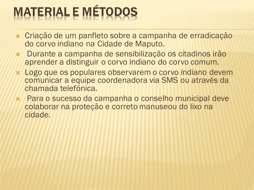 Material e Métodos Criação de um panfleto sobre a campanha de erradicação do corvo indiano na Cidade de Maputo.