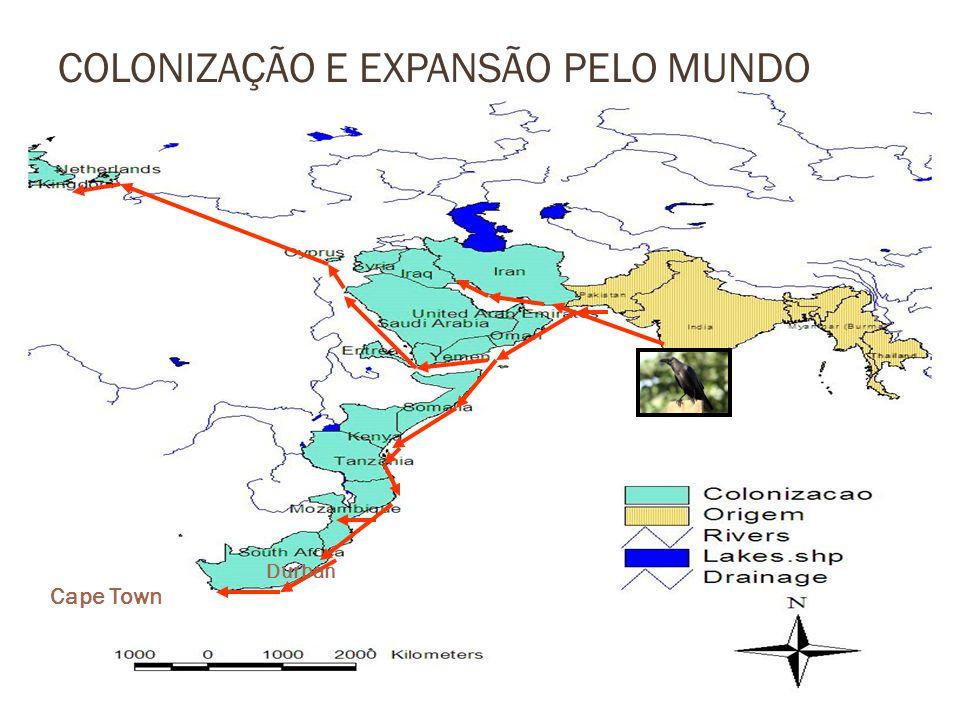 COLONIZAÇÃO E EXPANSÃO PELO MUNDO