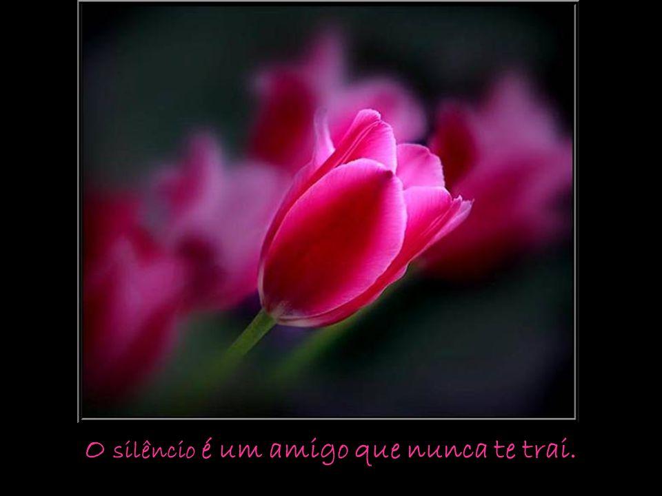 O silêncio é um amigo que nunca te trai.