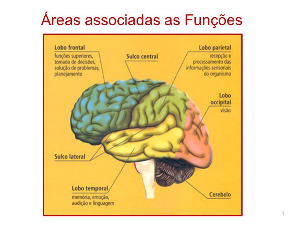 Áreas associadas as Funções