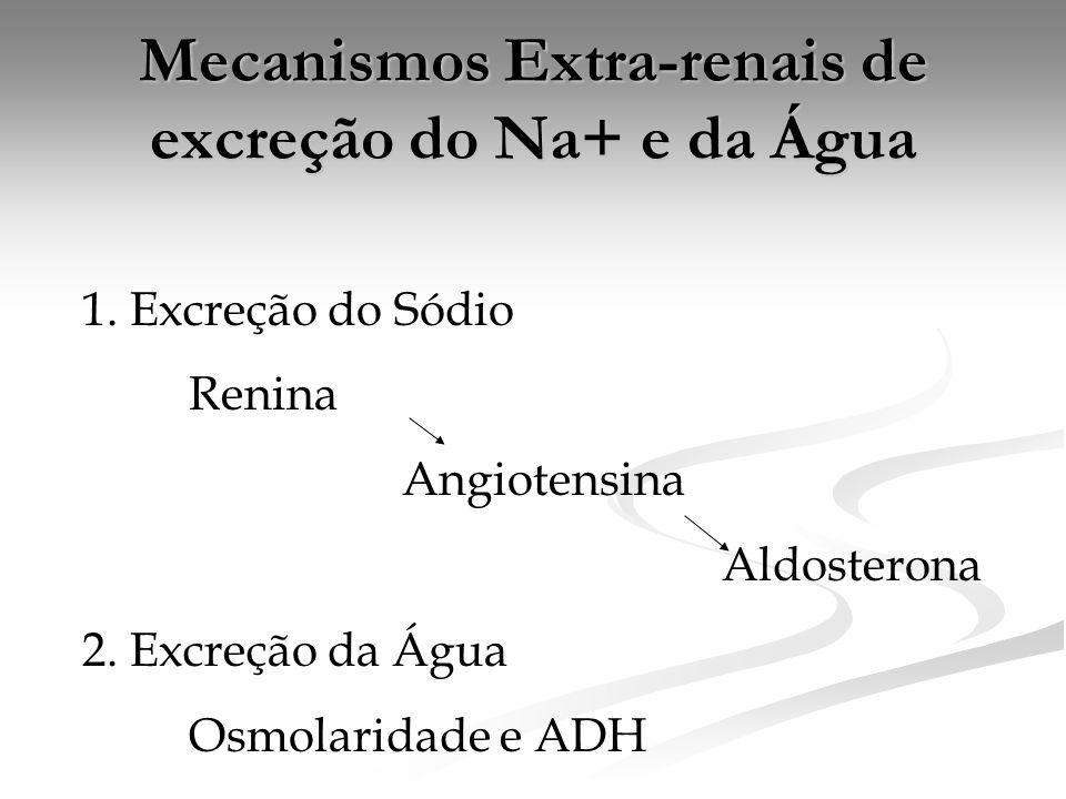 Mecanismos Extra-renais de excreção do Na+ e da Água