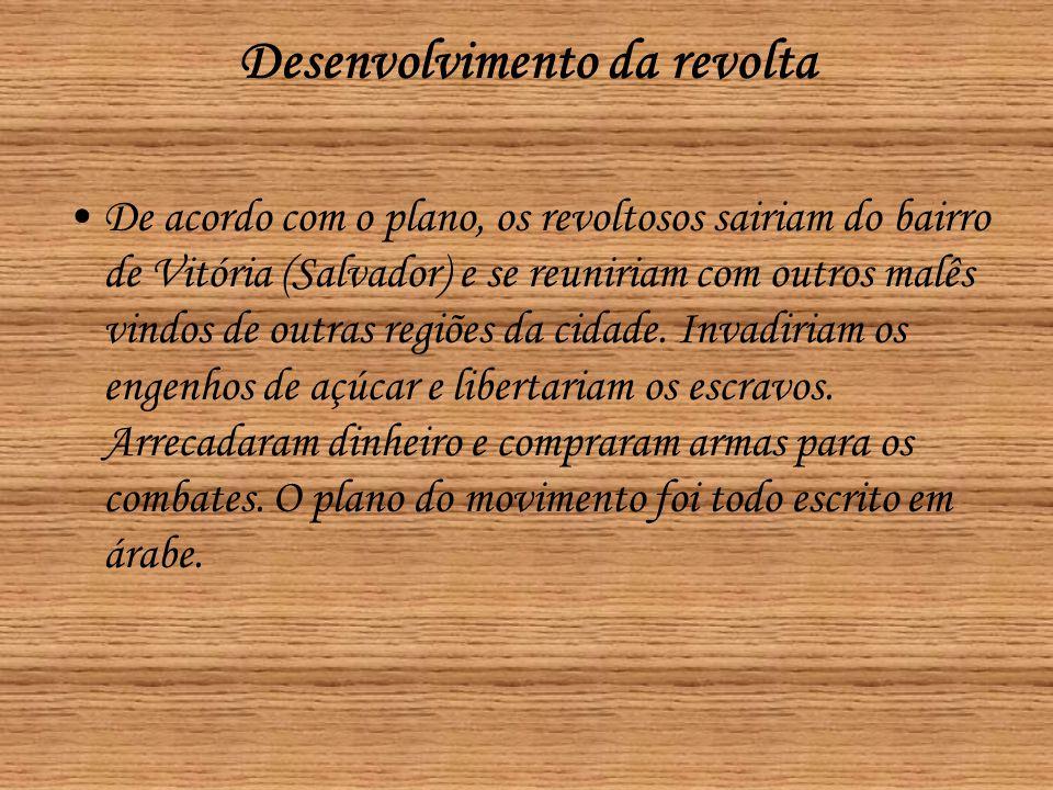 Desenvolvimento da revolta