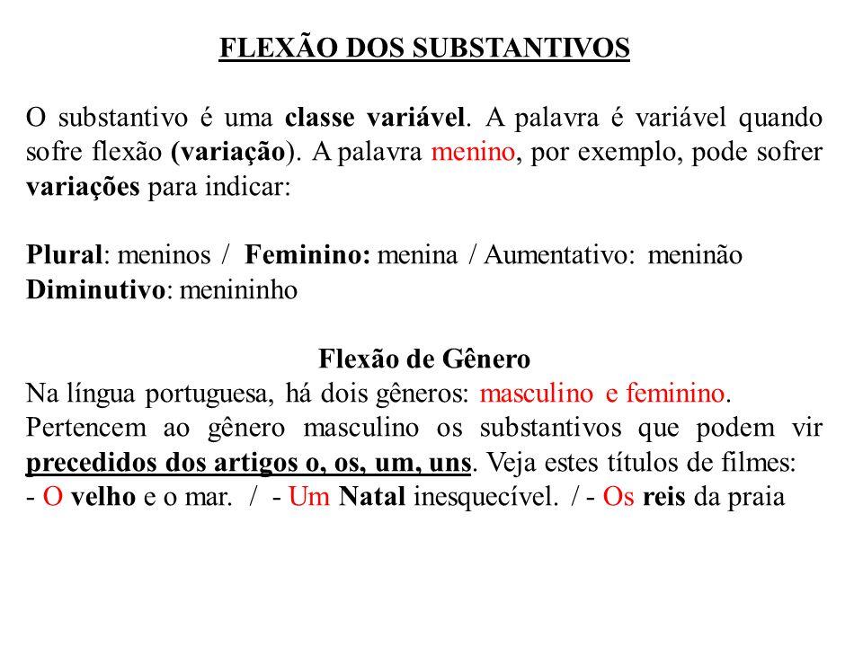 FLEXÃO DOS SUBSTANTIVOS