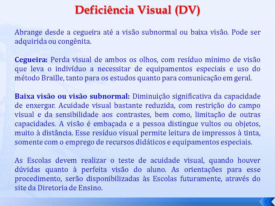Deficiência Visual (DV)