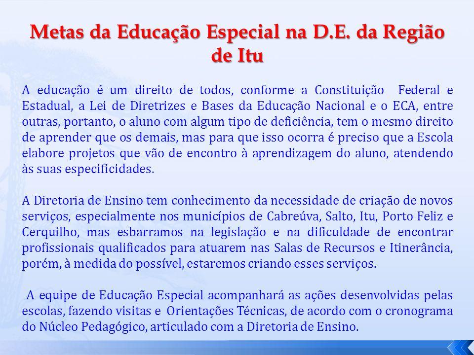 Metas da Educação Especial na D.E. da Região de Itu