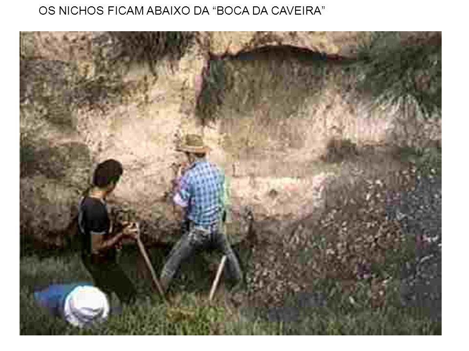 OS NICHOS FICAM ABAIXO DA BOCA DA CAVEIRA