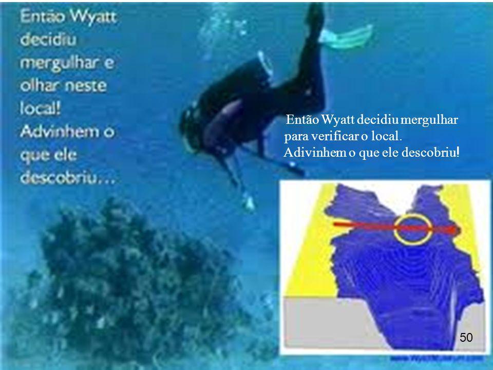 Então Wyatt decidiu mergulhar para verificar o local.