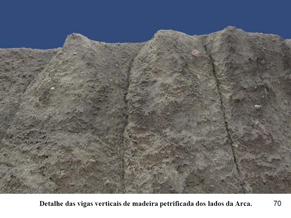 Detalhe das vigas verticais de madeira petrificada dos lados da Arca.