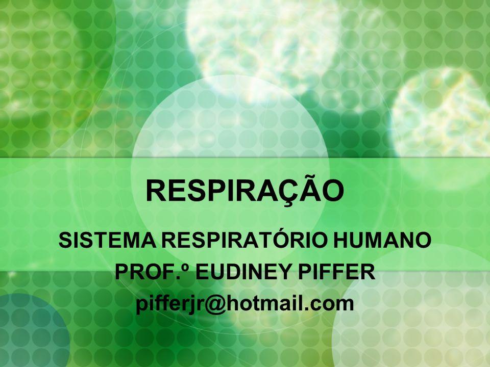 SISTEMA RESPIRATÓRIO HUMANO PROF.º EUDINEY PIFFER pifferjr@hotmail.com