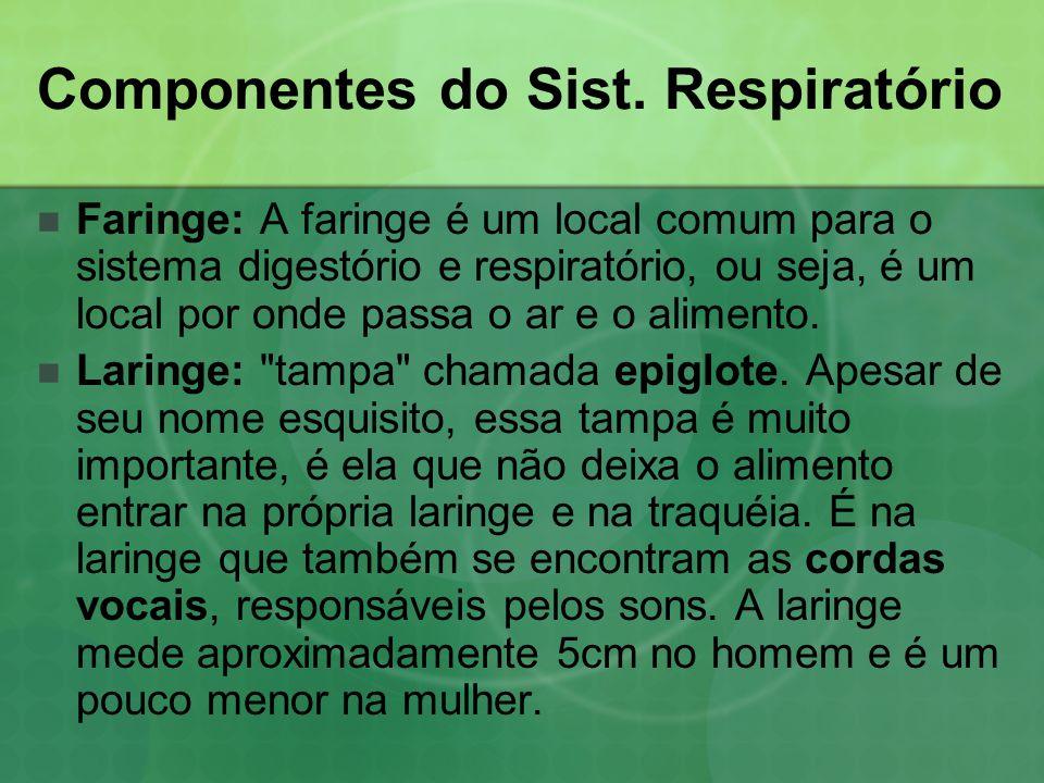 Componentes do Sist. Respiratório