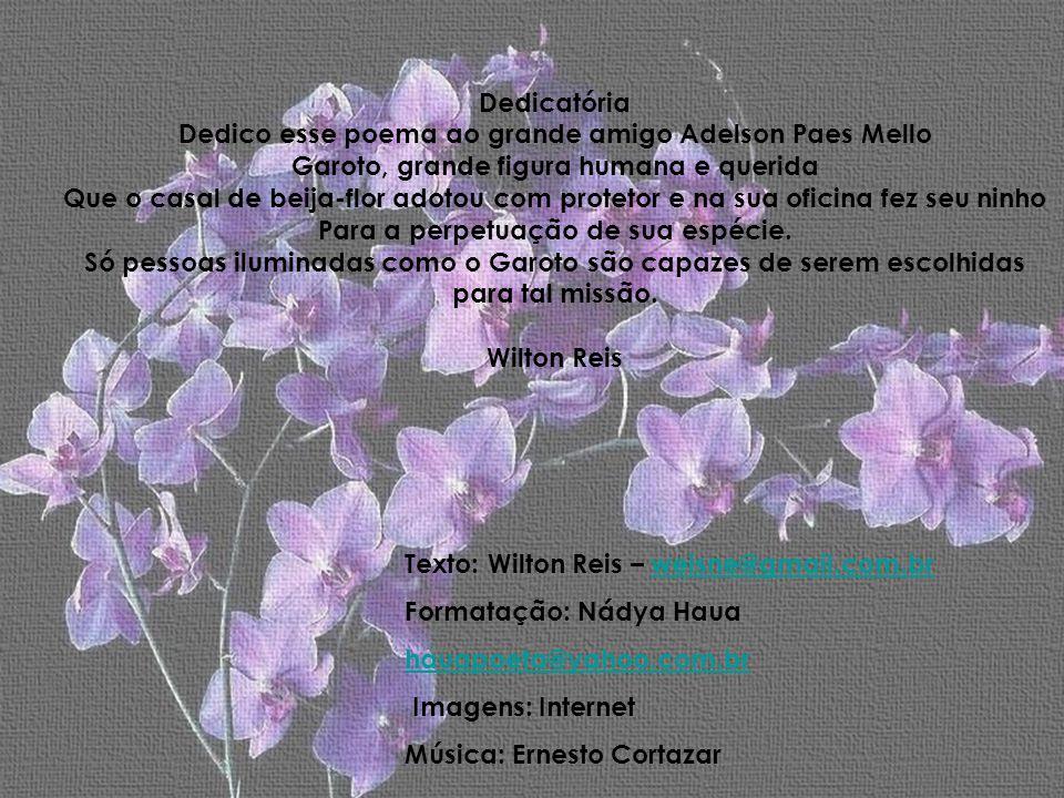 Dedico esse poema ao grande amigo Adelson Paes Mello