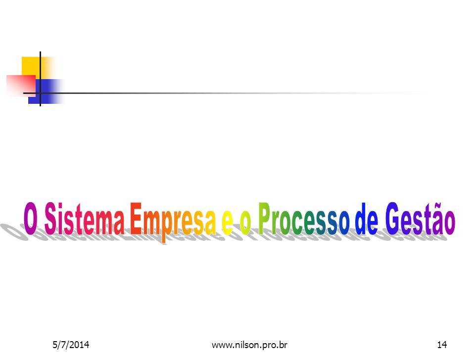 O Sistema Empresa e o Processo de Gestão