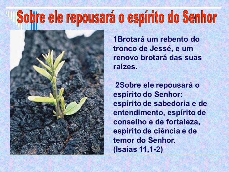Sobre ele repousará o espírito do Senhor