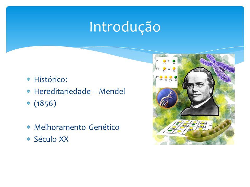 Introdução Histórico: Hereditariedade – Mendel (1856)