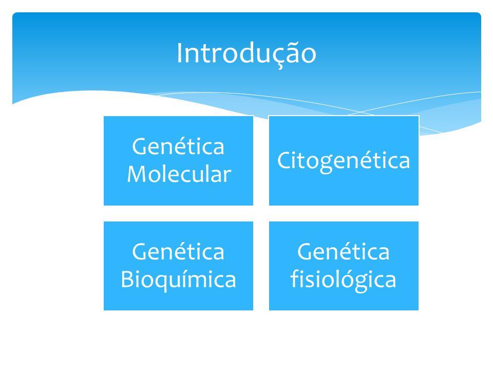 Introdução Genética Molecular Citogenética Genética Bioquímica