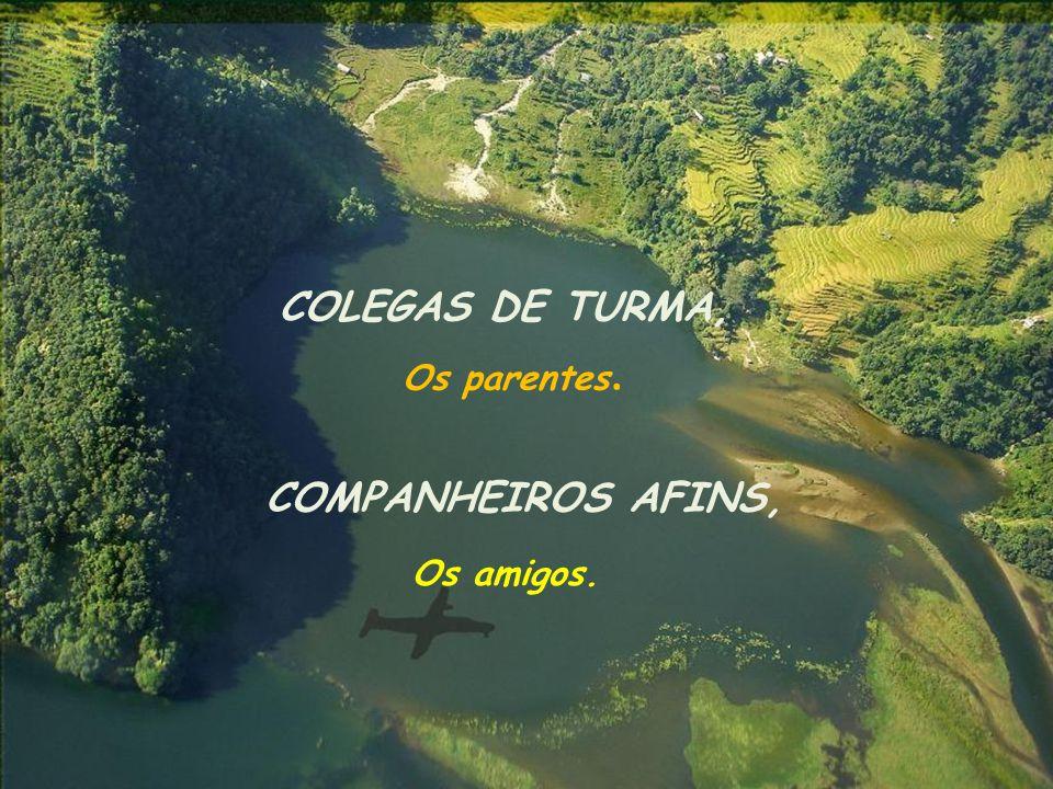 COLEGAS DE TURMA, Os parentes. COMPANHEIROS AFINS, Os amigos.