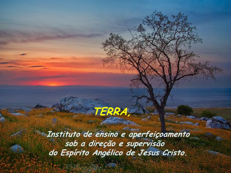 TERRA, Instituto de ensino e aperfeiçoamento