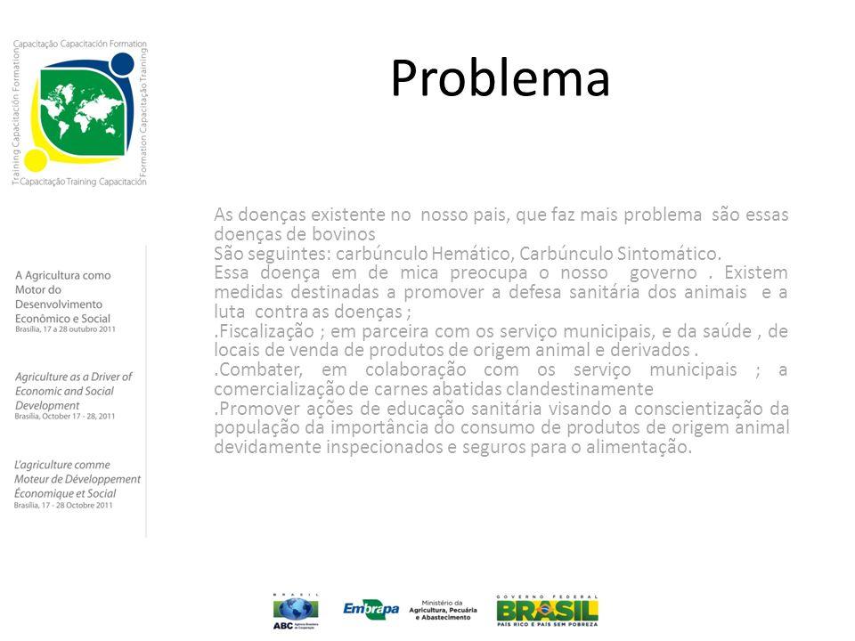 Problema As doenças existente no nosso pais, que faz mais problema são essas doenças de bovinos.