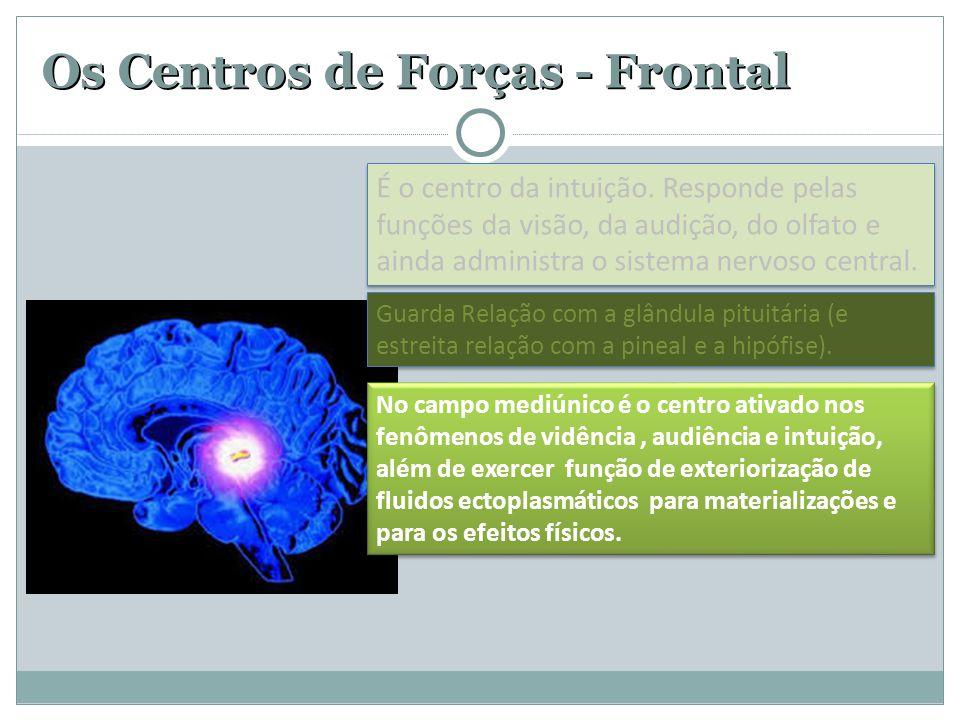 Os Centros de Forças - Frontal