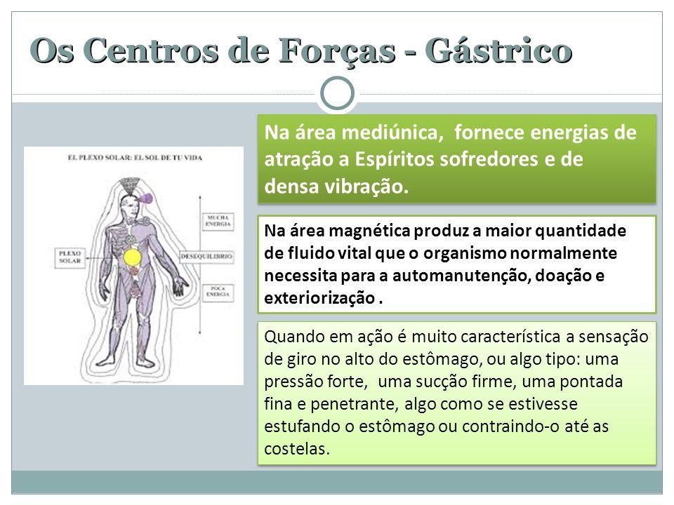 Os Centros de Forças - Gástrico