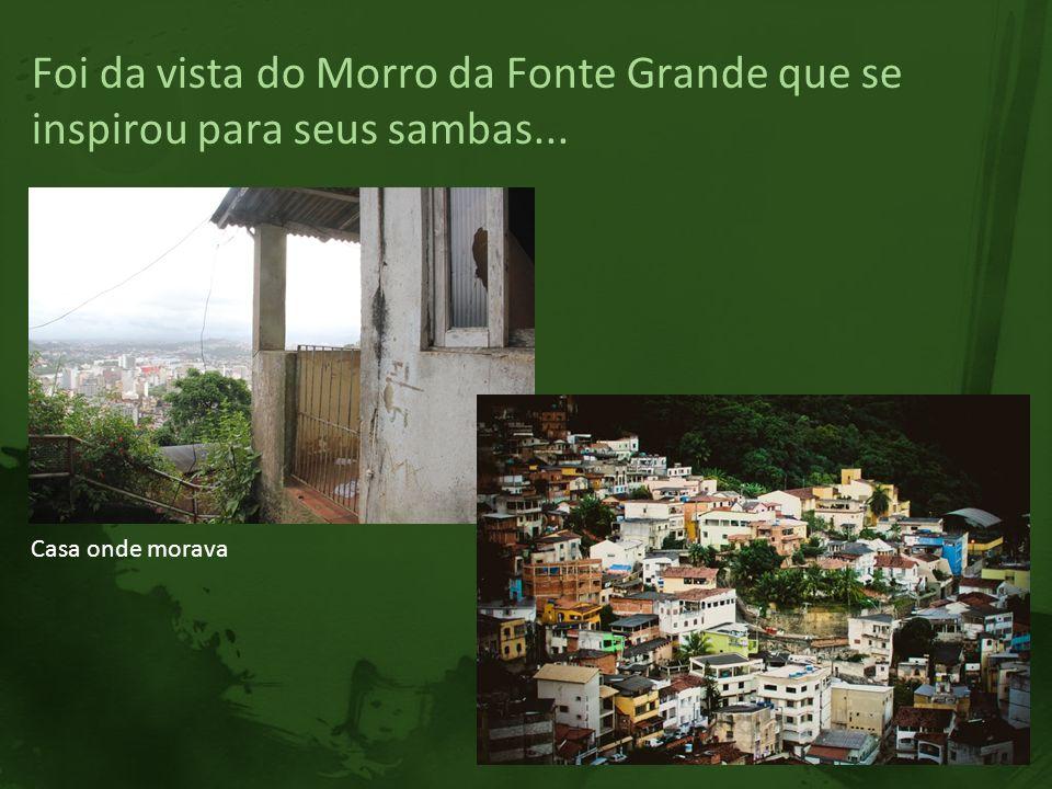 Foi da vista do Morro da Fonte Grande que se inspirou para seus sambas...