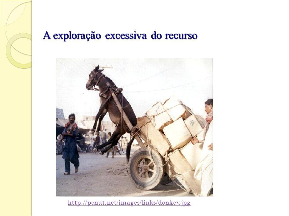 A exploração excessiva do recurso