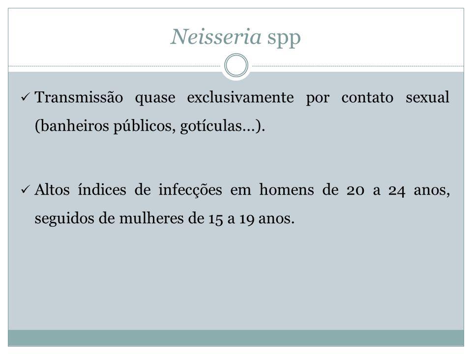 Neisseria spp Transmissão quase exclusivamente por contato sexual (banheiros públicos, gotículas...).