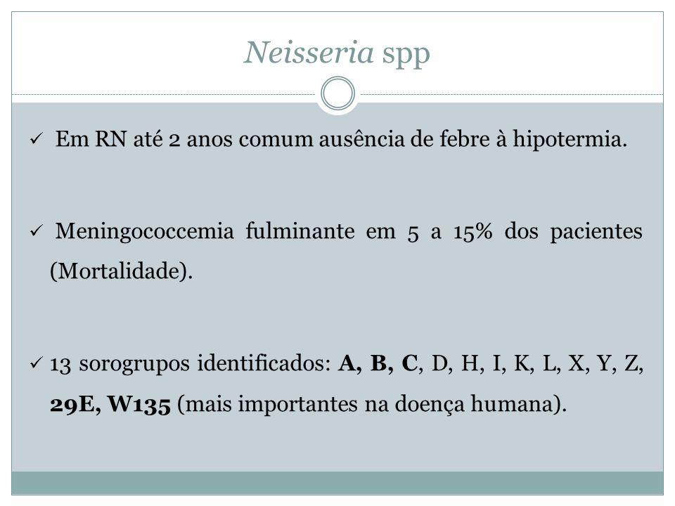 Neisseria spp Em RN até 2 anos comum ausência de febre à hipotermia.