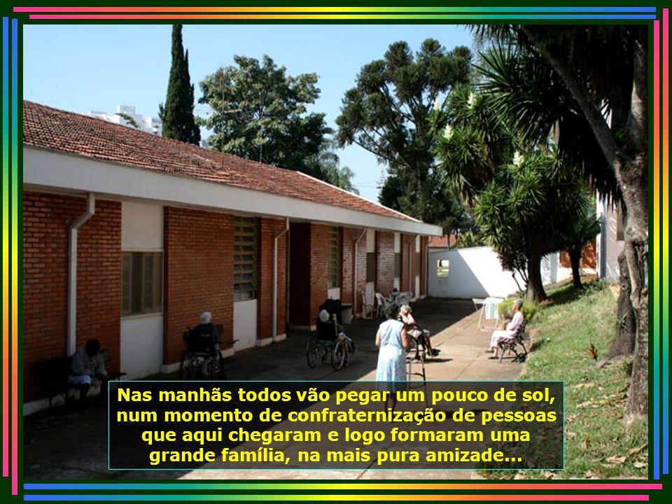 IMG_4842 - PIRACICABA - LAR DOS VELHINHOS - PÁTEO-670