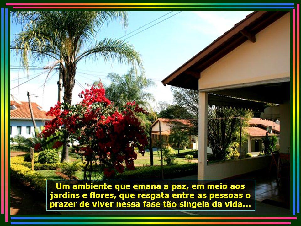 IMG_4550 - PIRACICABA - LAR DOS VELHINHOS-670