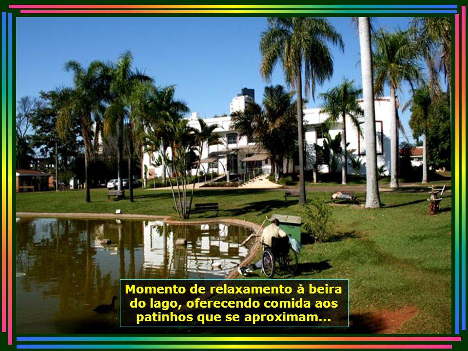 IMG_4789 - PIRACICABA - LAR DOS VELHINHOS - APRECIANDO O LAGO-670