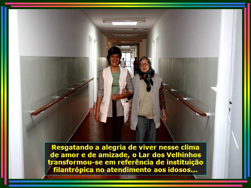 IMG_4815 - PIRACICABA - LAR DOS VELHINHOS - ANA LUIZA APAREC