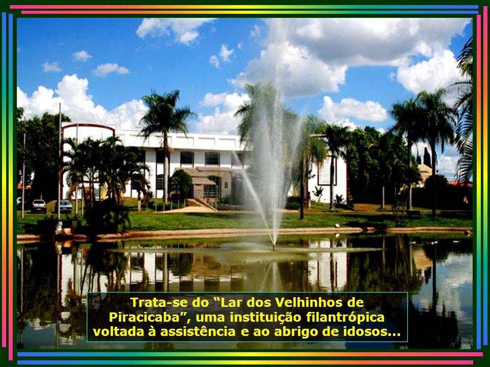 IMG_0465 - PIRACICABA - LAR DOS VELHINHOS-670