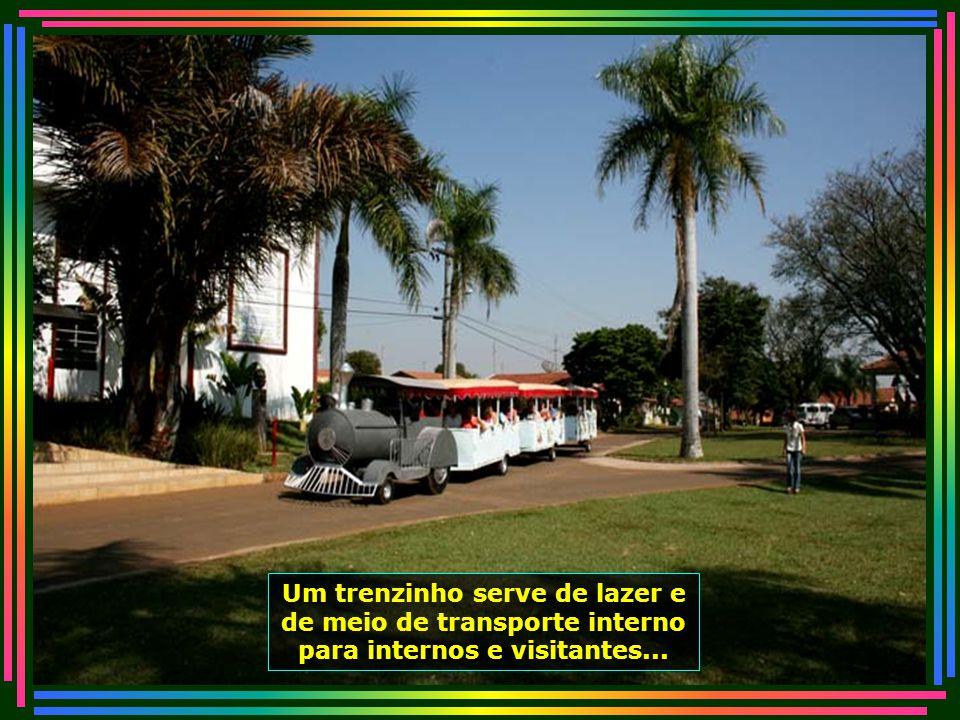 IMG_4989 - PIRACICABA - LAR DOS VELHINHOS - TRENZINHO-670