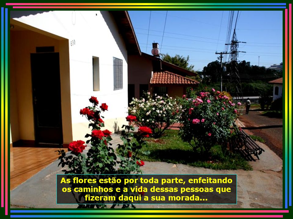 IMG_4801 - PIRACICABA - LAR DOS VELHINHOS - CASA COM FLORES-670