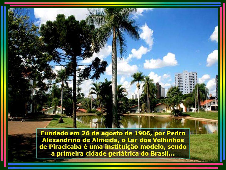 IMG_0462 - PIRACICABA - LAR DOS VELHINHOS-670