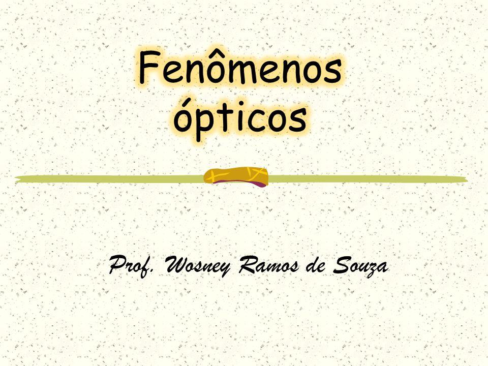 Prof. Wosney Ramos de Souza