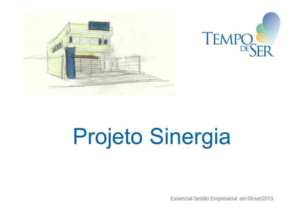Projeto Sinergia Essencial Gestão Empresarial, em 09/set/2013 1
