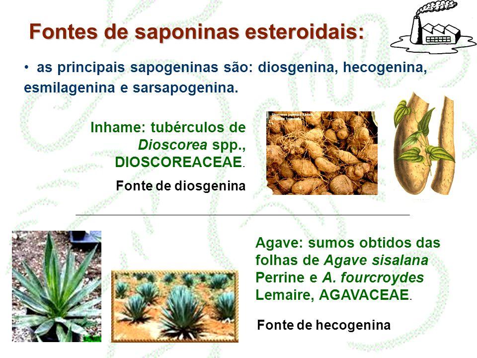 Fontes de saponinas esteroidais: