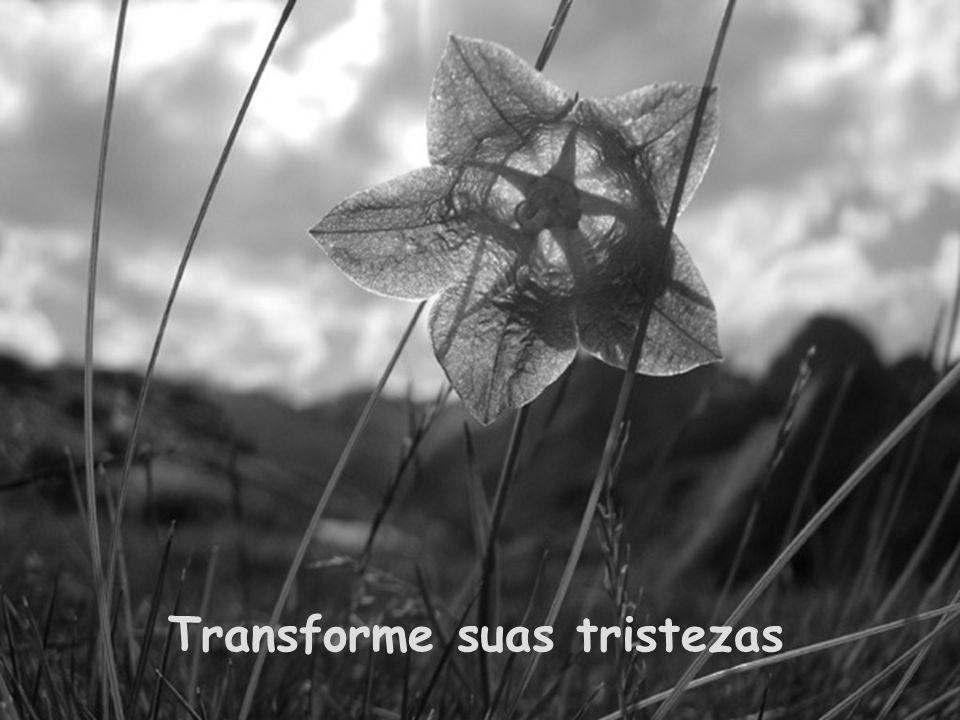 Transforme suas tristezas