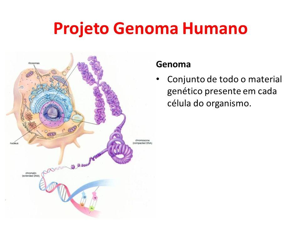 Projeto Genoma Humano Genoma